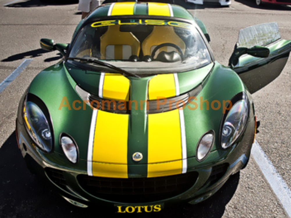 Lotus Whole Body Stripes (Style#15) x 1 set (middle)